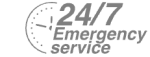 24/7 Emergency Service Pest Control in Olympic Park, E20. Call Now! 020 8166 9746